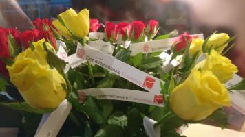Die Rosen können verteilt werden